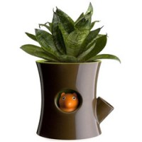origineel bloempotje met waterreservoir