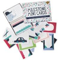 milestone mini cards - nederlands