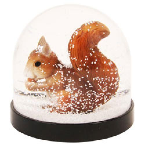 Klevering-mooie sneeuw schudbol eekhoorn-eekhoorn-7554