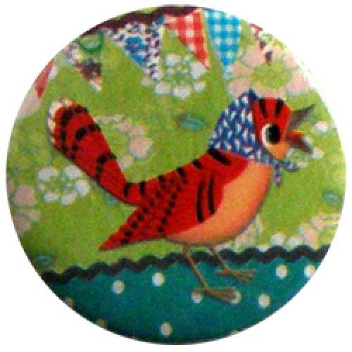 Froy en Dind-hippe retro badge-vogel met kapje-2767